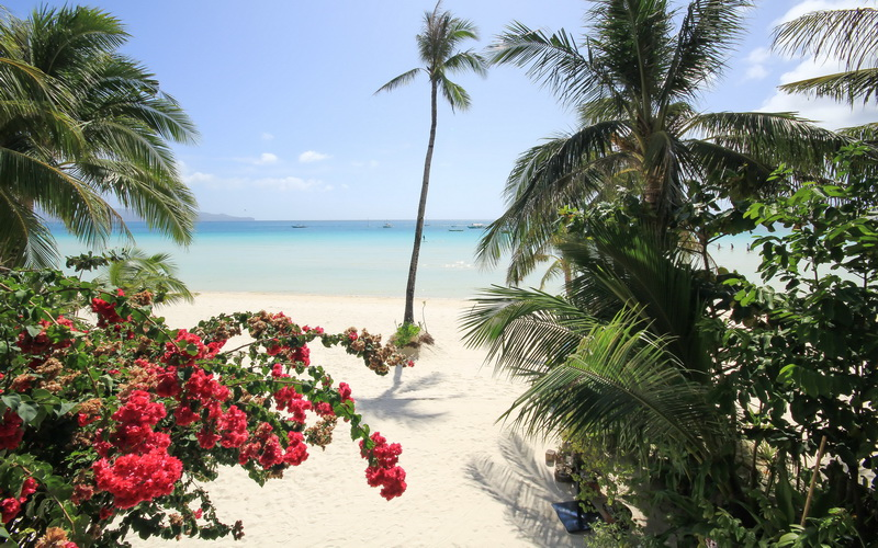 Robinson Beach House Boracay